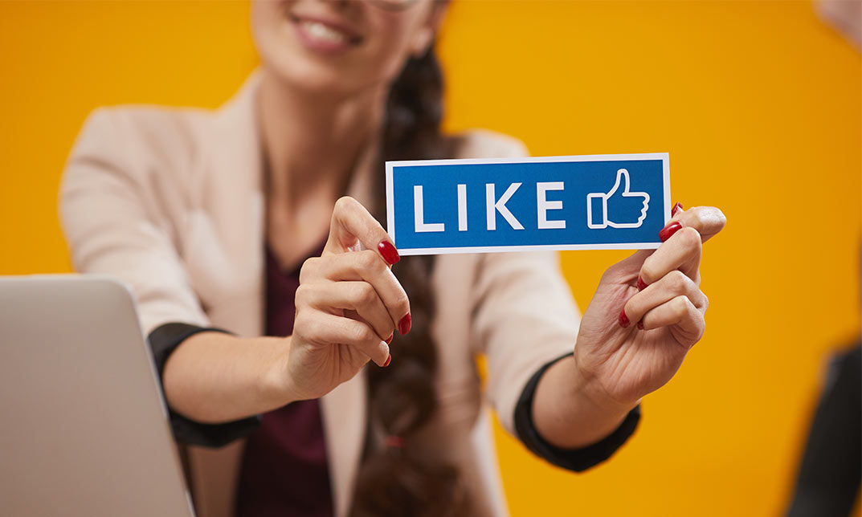 Webinarreihen und eLearning für Kreis Dithmarschen zum Thema Social Media und Newsletter-Marketing